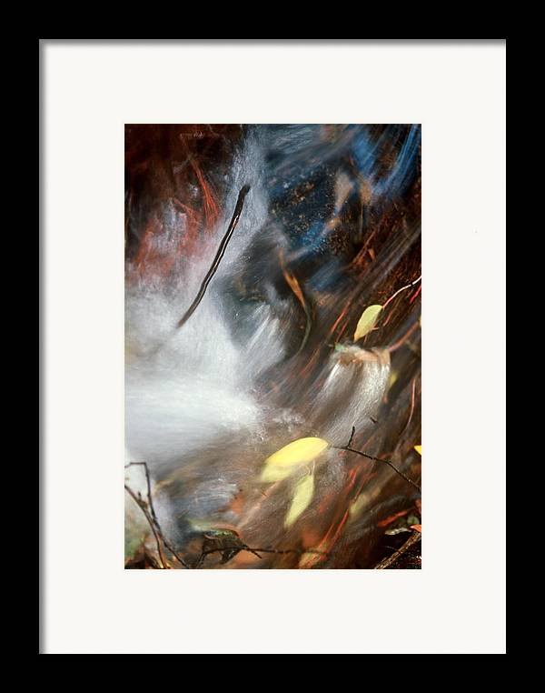 Leaves Framed Print featuring the photograph Swept Away by Lynard Stroud
