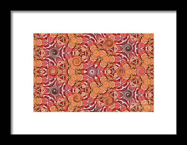 Home Decor Framed Print featuring the photograph Swirls Abstract by Debby Pueschel