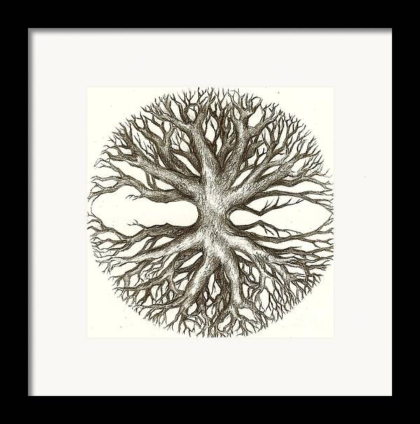 Branches Framed Print featuring the drawing Symetree by Julianna Ziegler