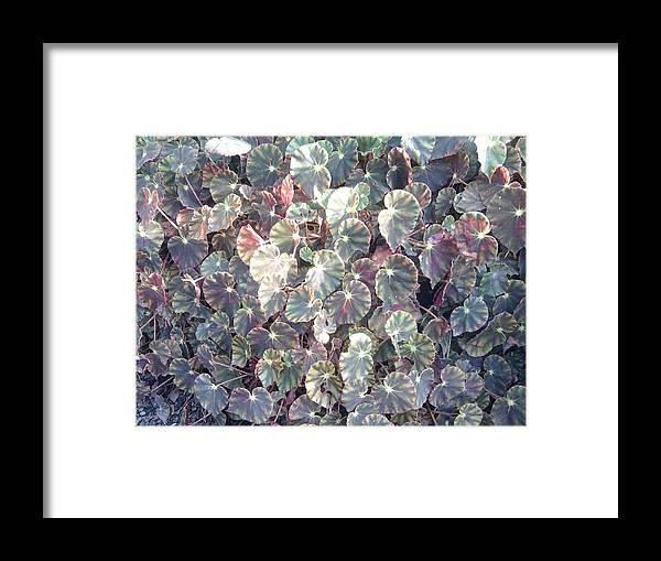 Background Framed Print featuring the photograph Taare Jameen Par Or Star On Earth by Anil Bajpai