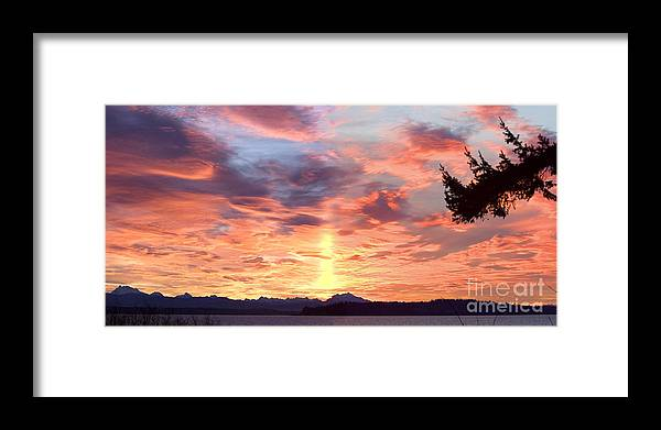 Sunrise Framed Print featuring the photograph Tada Today by Sandy Byers