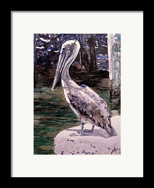 Pelican Framed Print featuring the painting Taking A Break by Jim Phillips