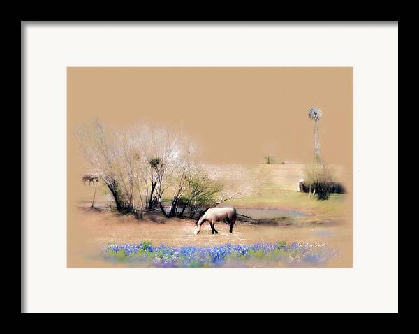 Texas Horses Pasture Bluebonnets Windmill Landscape Framed Print featuring the painting Taking It Slow And Easy by Carolyn Staut