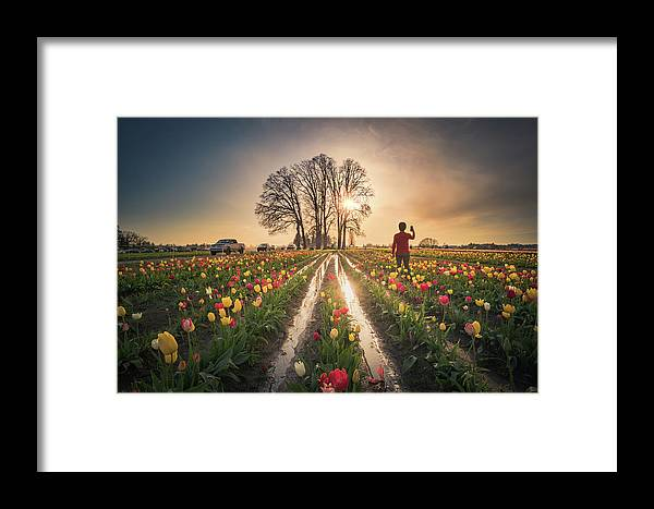Travel Framed Print featuring the photograph Taking Sunset Pictures Using A Mobile Phone by William Freebilly photography