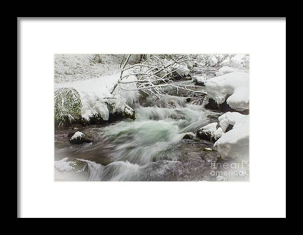 Mt. Hood Framed Print featuring the photograph Tamanawas Creek by Patricia Babbitt