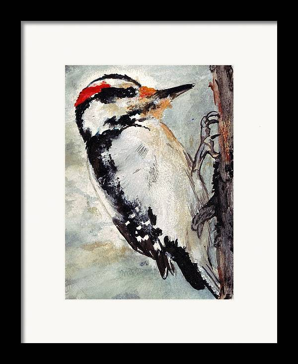 Hairy Woodpecker Framed Print featuring the painting Tappity Tap by Debra Sandstrom