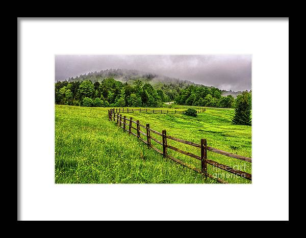 Spring Framed Print featuring the photograph Tea Creek Meadow And Buttercups by Thomas R Fletcher