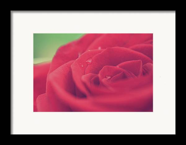 Macro Framed Print featuring the photograph Tears Of Love by Laurie Search