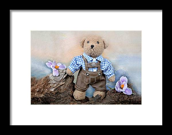 Teddy Framed Print featuring the photograph Teddy On Tour by Manfred Lutzius