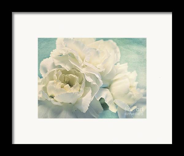 Carnation Framed Print featuring the photograph Tenderly by Priska Wettstein