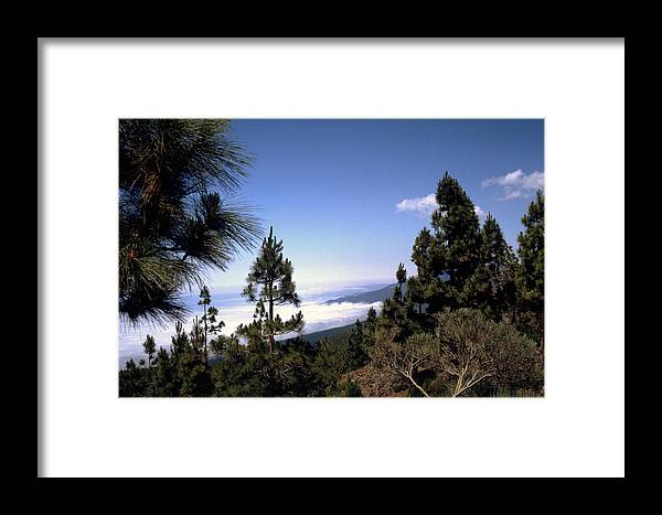 Tenerife Framed Print featuring the photograph Tenerife by Flavia Westerwelle