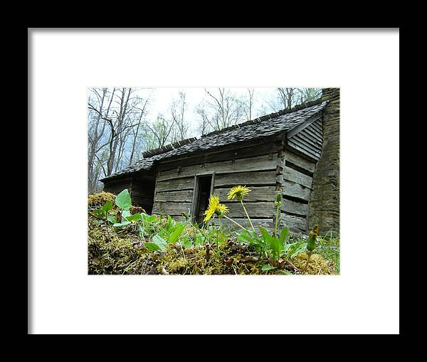 Tennessee Framed Print featuring the photograph Tennessee Homestead by Linda Russell