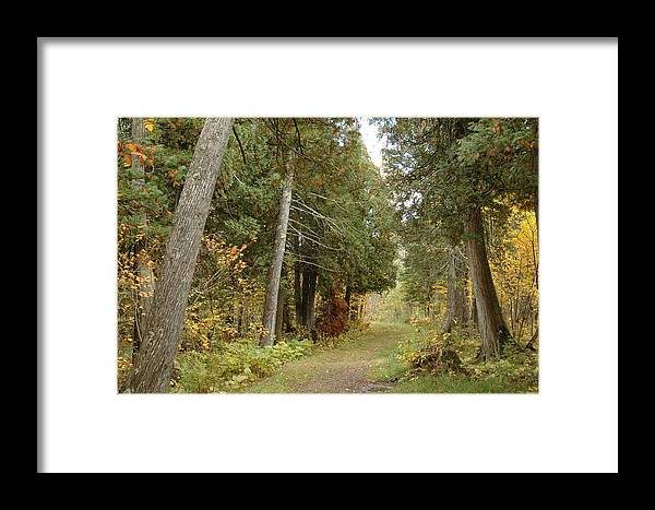 Landscape Framed Print featuring the photograph Tettegouche State Park by Kathy Schumann