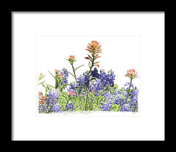 Blue Framed Print featuring the photograph Texas Bluebonnets And Red Indian Paintbrushes by David and Carol Kelly