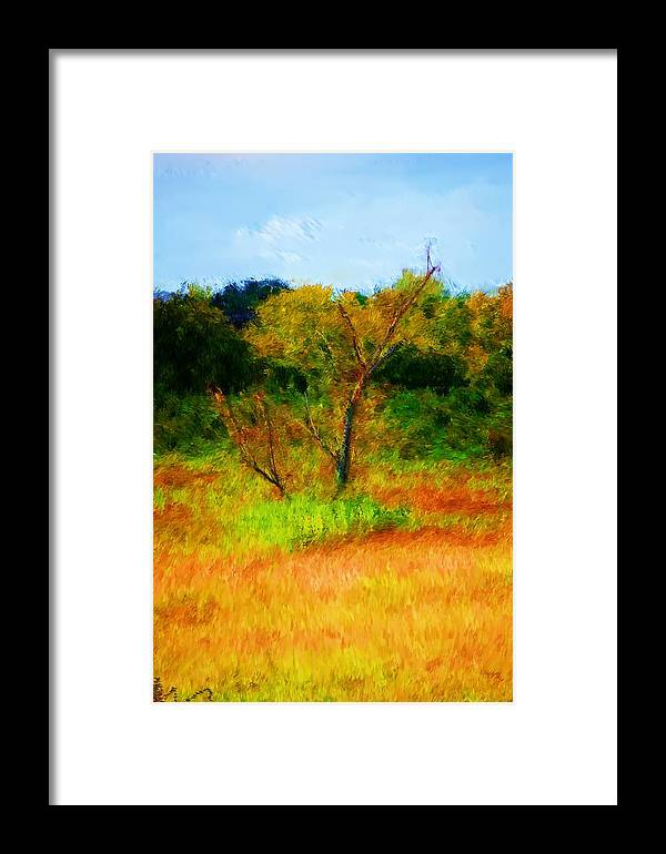 Landscape Framed Print featuring the photograph Texas Landscape 102310 by David Lane