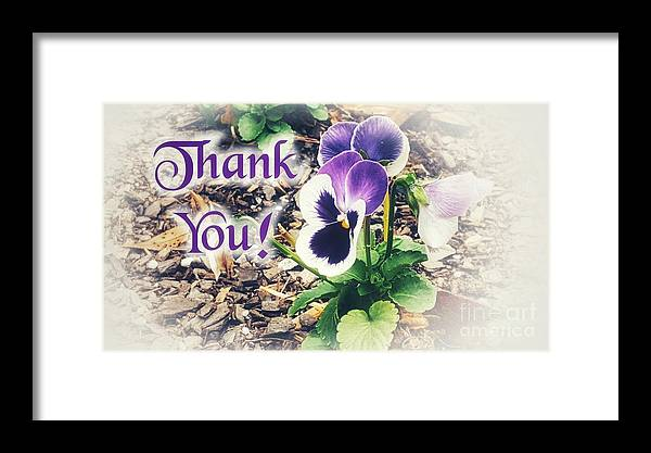 Greeting Framed Print featuring the photograph Thank You Pansy by Rachel Hannah