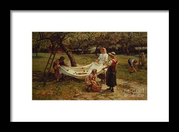 The Framed Print featuring the painting The Apple Gatherers by Frederick Morgan