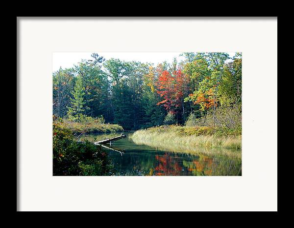 Landscape Framed Print featuring the photograph The Beginning Of Fall by Jennifer Englehardt