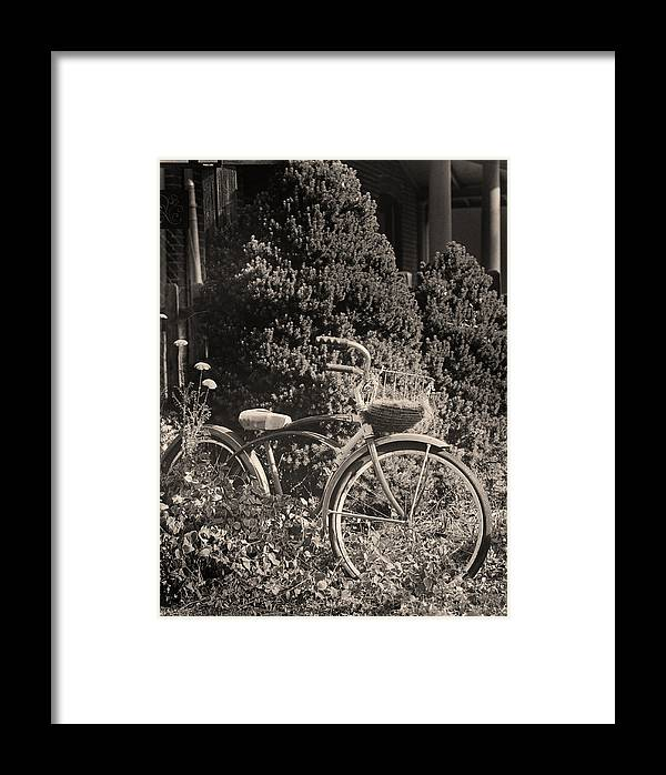Bike Framed Print featuring the photograph The Bicycle Garden II by Jim Furrer