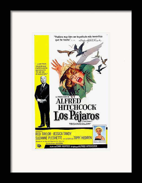 1960s Movies Framed Print featuring the photograph The Birds, Aka Los Pajaros, Alfred by Everett