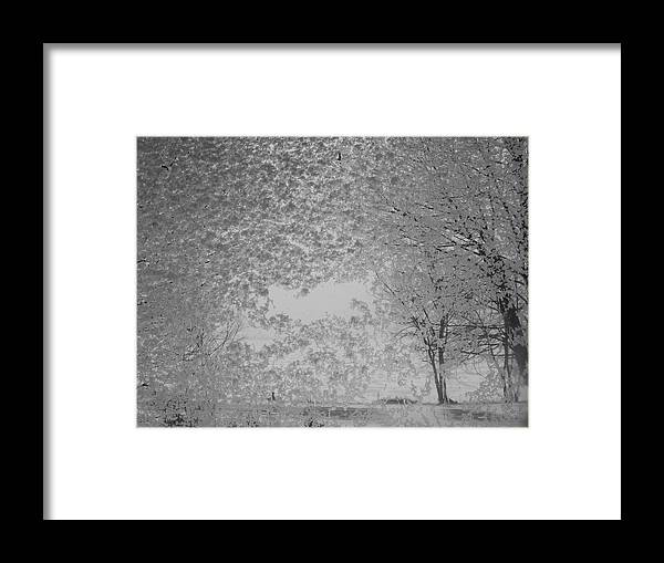 Landscape Framed Print featuring the photograph The Clearing by John Kuti