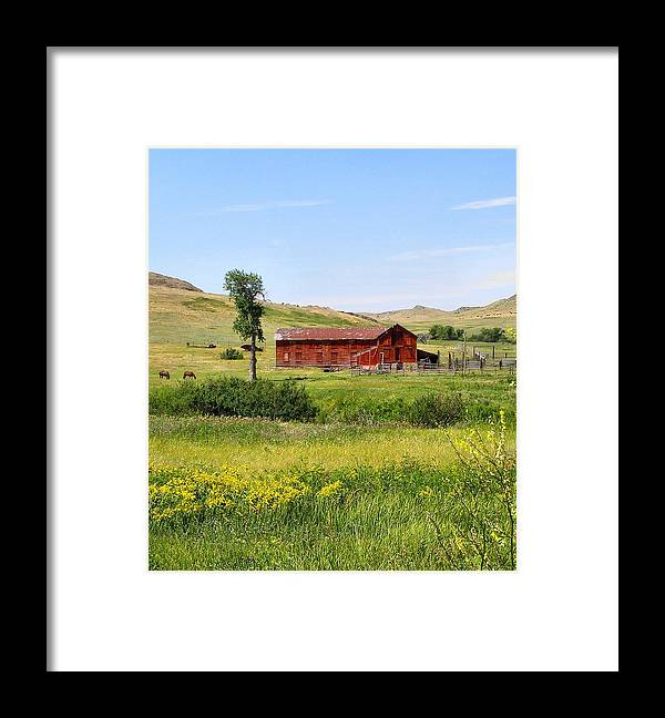 Montana Framed Print featuring the photograph The Color of Montana by Susan Kinney