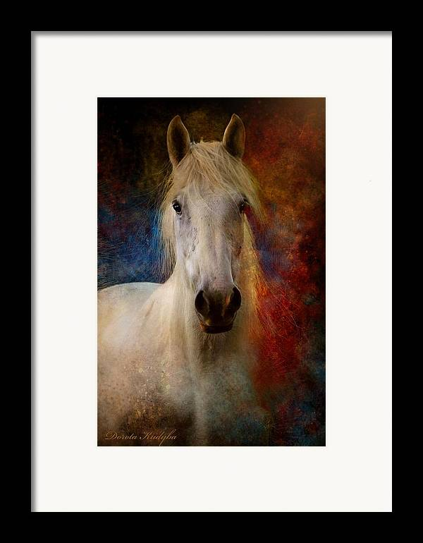 E Framed Print featuring the photograph The Colours Of Love. by Dorota Kudyba
