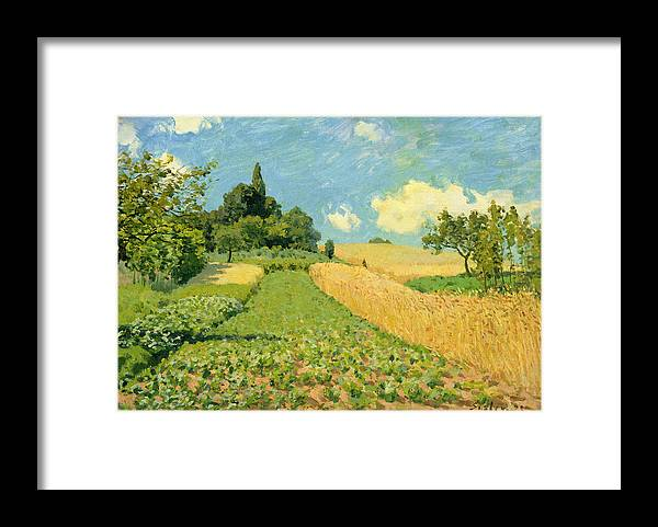 The Cornfield Framed Print By Alfred Sisley