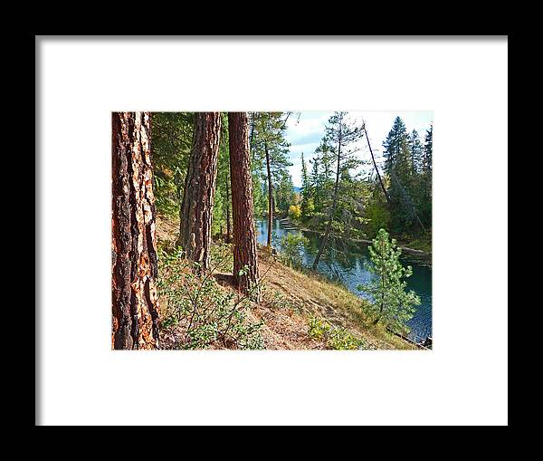 Christina Framed Print featuring the photograph The Creek by Nancy Harrison