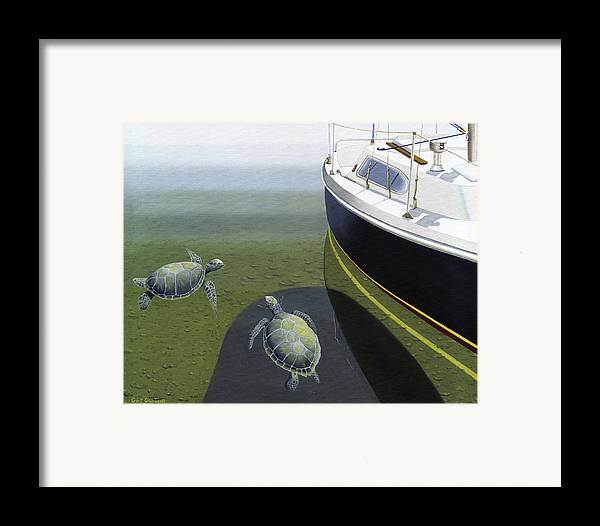 Sail Boat Framed Print featuring the painting The Curiosity Of Sea Turtles by Gary Giacomelli