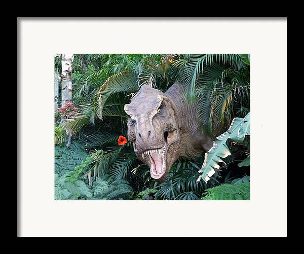 Dinosaur Framed Print featuring the photograph The Dinosaurs Lunch by Rana Adamchick