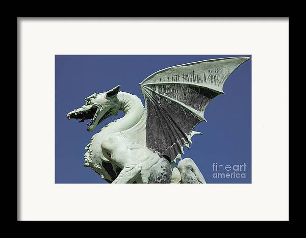 Dragon Framed Print featuring the photograph The Dragon by Steve Outram