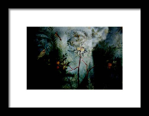 Dream Framed Print featuring the photograph The Dream by Munir Alawi