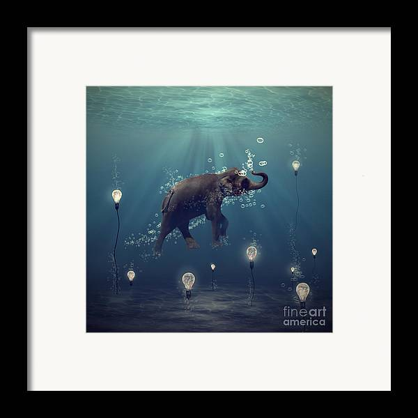 Elephant Framed Print featuring the photograph The Dreamer by Martine Roch