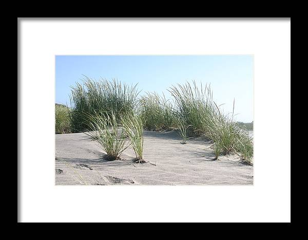 Nature Framed Print featuring the photograph The Dunes by Dennis Curry