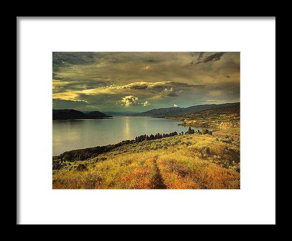 Lake Framed Print featuring the photograph The Evening Calm by Tara Turner