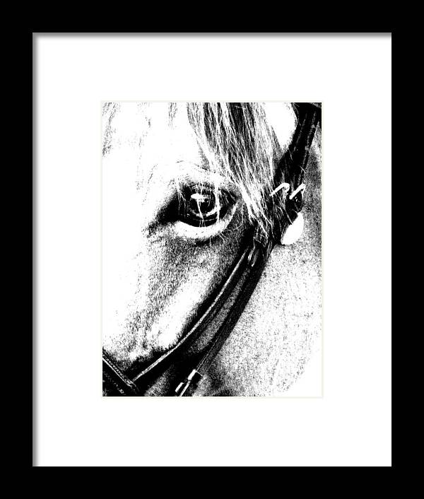 Horse Framed Print featuring the digital art The Eye Of The Horse by Donna Thomas