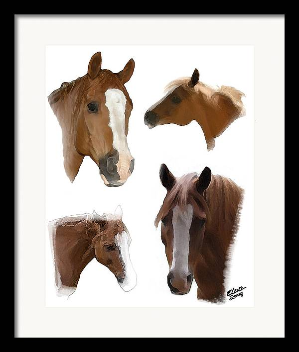 Arabian Horse Framed Print featuring the painting The Faces Of T by Elzire S
