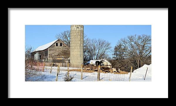 Farm Framed Print featuring the photograph The Feeding by Bonfire Photography