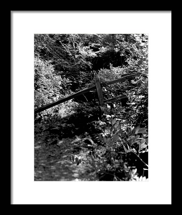 Woods Framed Print featuring the photograph The Fence by Ayesha Lakes