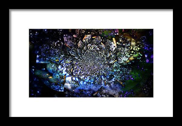 Flowers Framed Print featuring the photograph The Final Frontier by Maria Wall