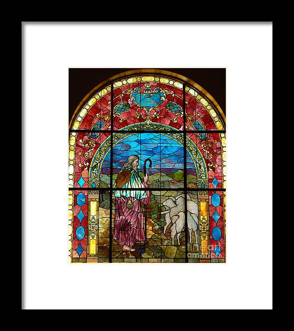 Diane Berry Framed Print featuring the photograph The Flock by Diane E Berry