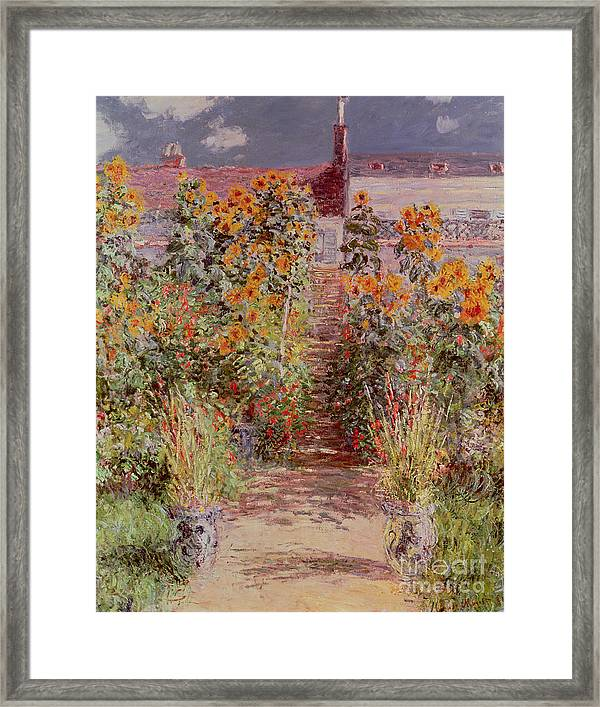The Garden At Vetheuil Framed Print Featuring The Painting The Garden At  Vetheuil By Claude Monet