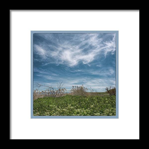 Utah Framed Print featuring the photograph The Gnat Festival by Robert Fawcett