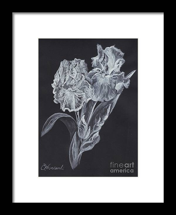 Black & Whie Framed Print featuring the painting The Gossamer Iris by Carol Wisniewski