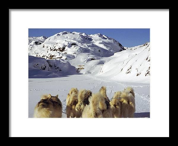 Greenland Framed Print featuring the photograph The Greenlandic Road by Wedigo Ferchland