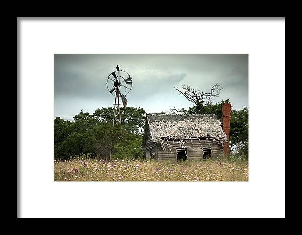 Rural Framed Print featuring the photograph The Guardian by Mike Irwin