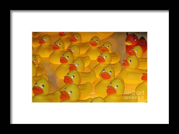 Yellow Framed Print featuring the photograph The Herd by Lora Wood