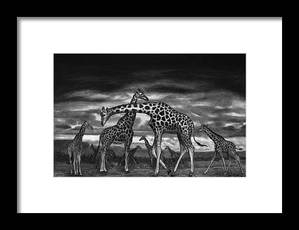 The Herd Framed Print featuring the drawing The Herd by Peter Piatt