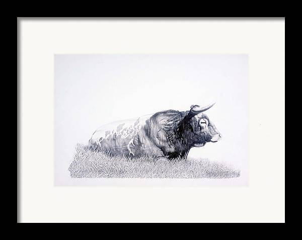 Longhorn Framed Print featuring the drawing The Herdmaster by Howard Dubois